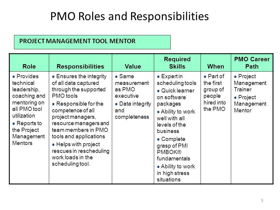 roles and responsibilties The roles and responsibilities for managing the project must be fully documented and adapted to suit the size and complexity of the project and the skills of the organisation common mistakes no clear ownership for the project.