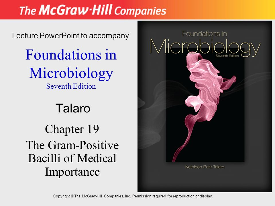 importance of microbiology The microbiological principles are exploited in the fields of food microbiology, environmental the aim and scope of this journal is to produce high quality articles on related aspects of microbiology.