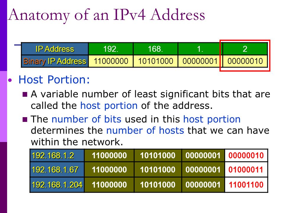 Network Layer IP Address. - ppt video online download