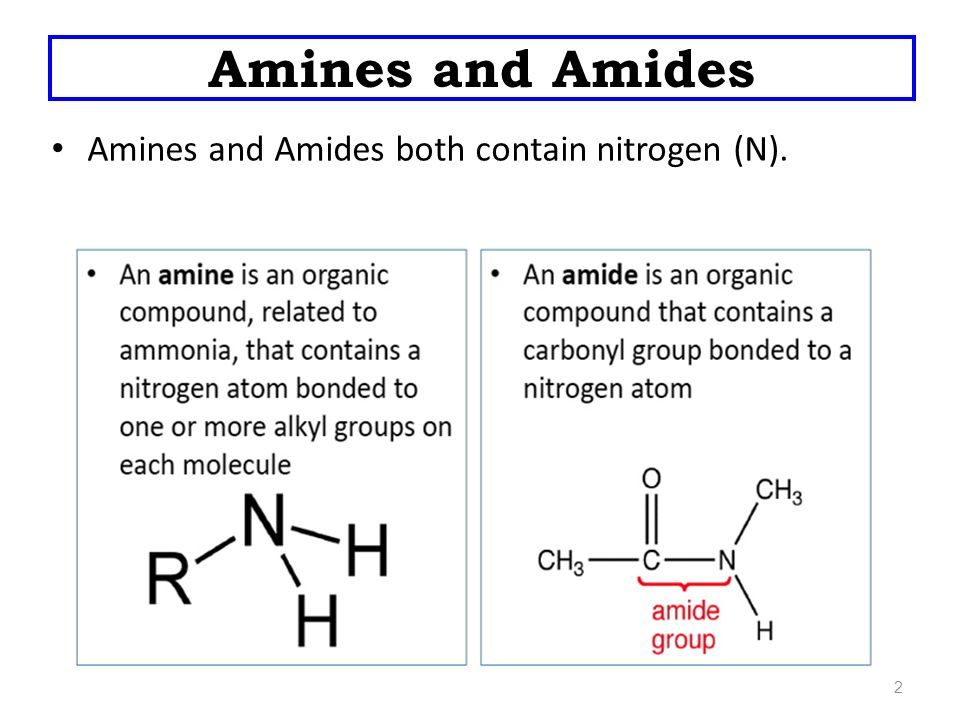 Amines and Amides  - ppt video online download