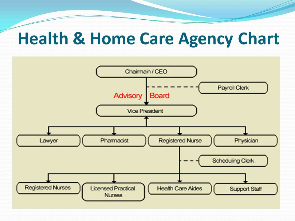 Behaviors For Success In Healthcare Ppt Download