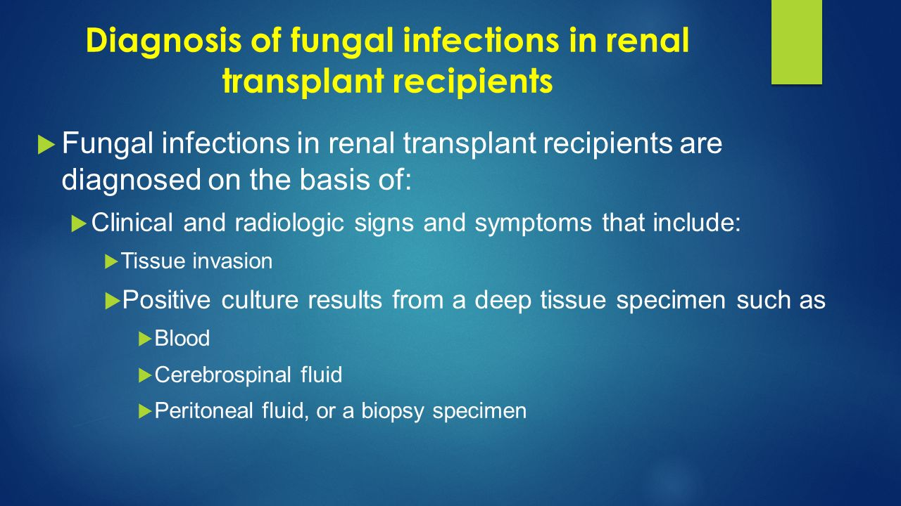 Diagnosis of fungal infections in renal transplant recipients