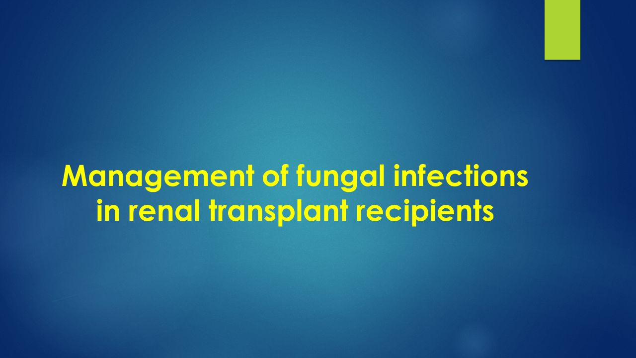 Management of fungal infections in renal transplant recipients