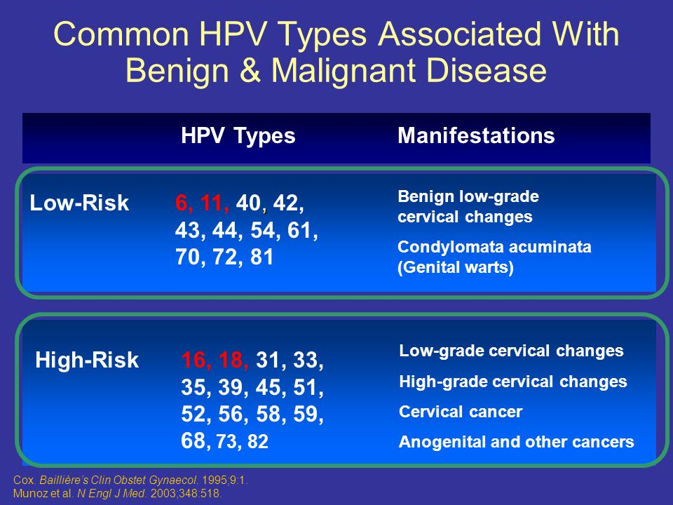 hpv types associated with malignant disease parazit rostlin