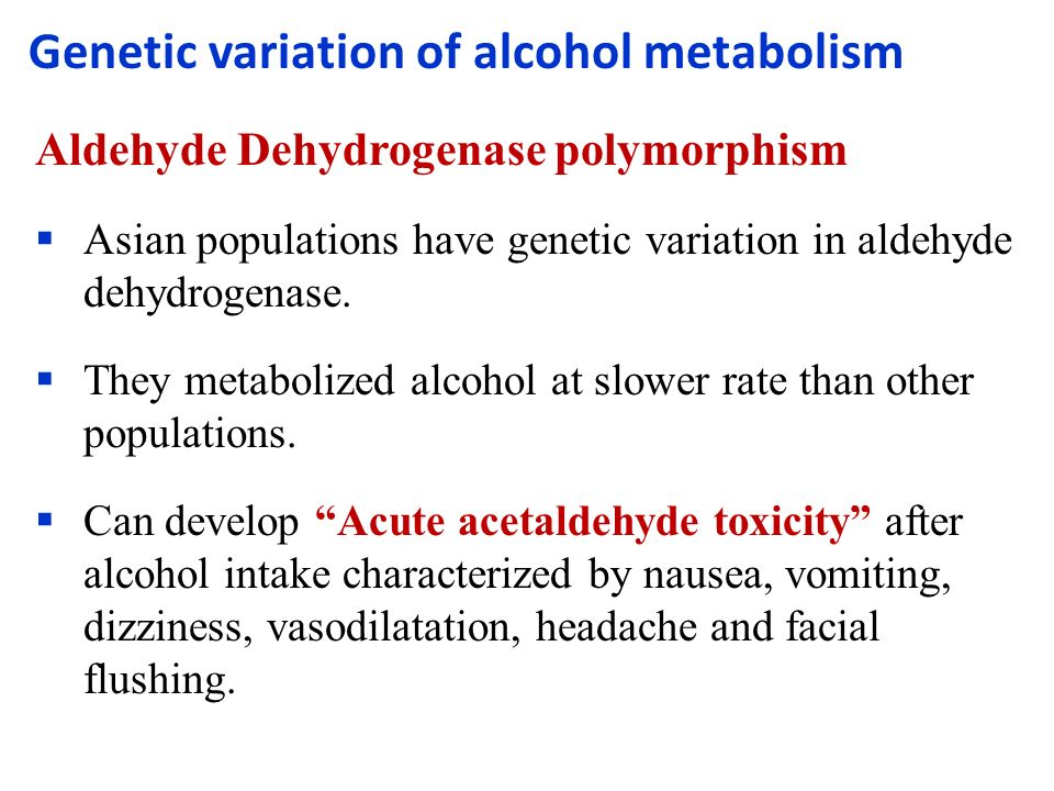 Asian alcohol metabolizing alcohol
