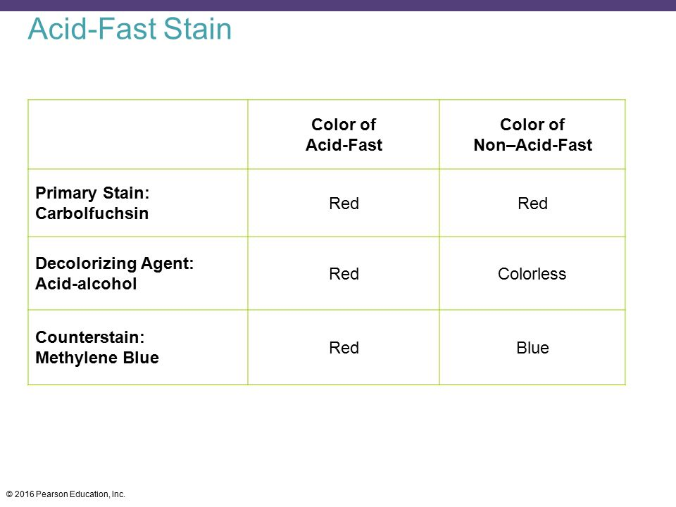 Acid-Fast Stain Color of Acid-Fast Non–Acid-Fast Primary Stain: