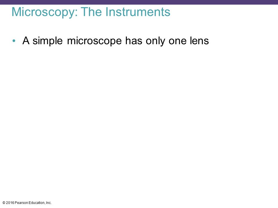 Microscopy: The Instruments