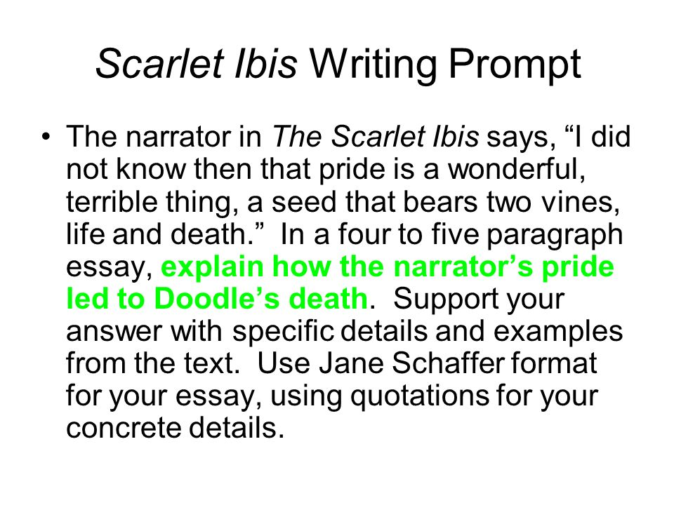 Sample Of Proposal Essay  Scarlet Ibis Writing Prompt Compare And Contrast Essay On High School And College also High School Memories Essay The Scarlet Ibis Essay Outline  Ppt Video Online Download Custom Essay Paper