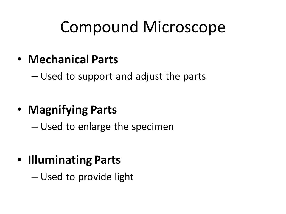 components of microscope and their function