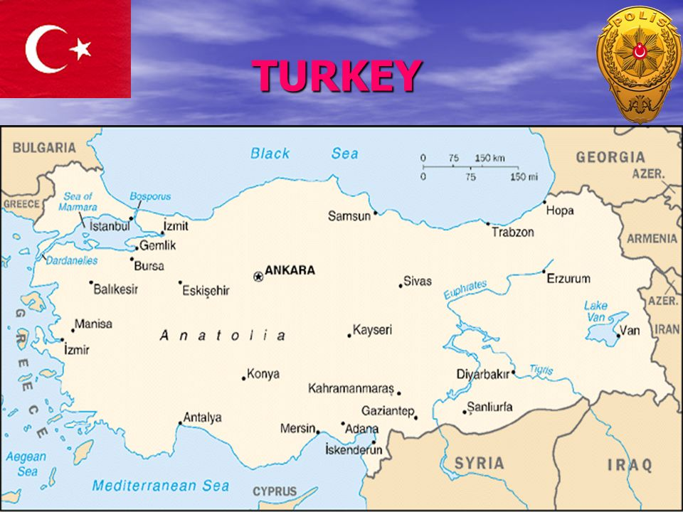 TURKISH POLICE DEPARTMENT - ppt video online download