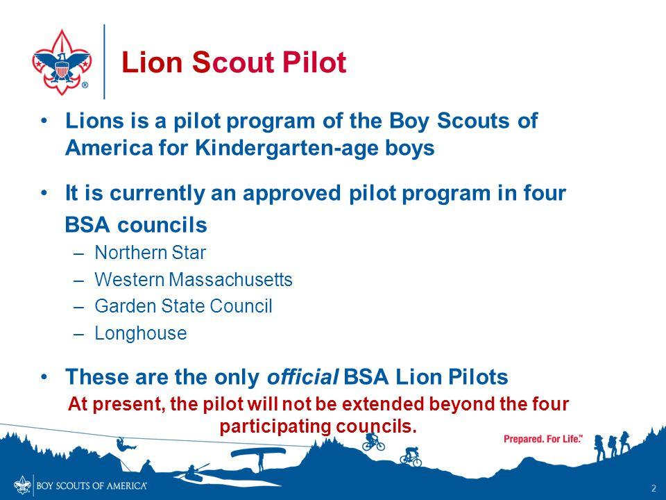 The Lion Scout Pilot Project - ppt video online download