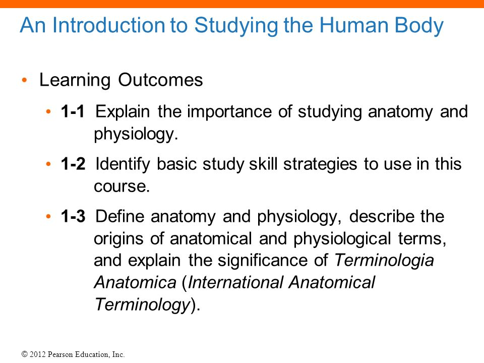 1 An Introduction to Anatomy and Physiology. - ppt video online download