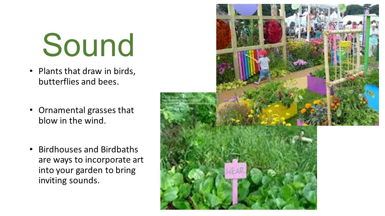what is a sensory garden 3 sound - Sensory Garden