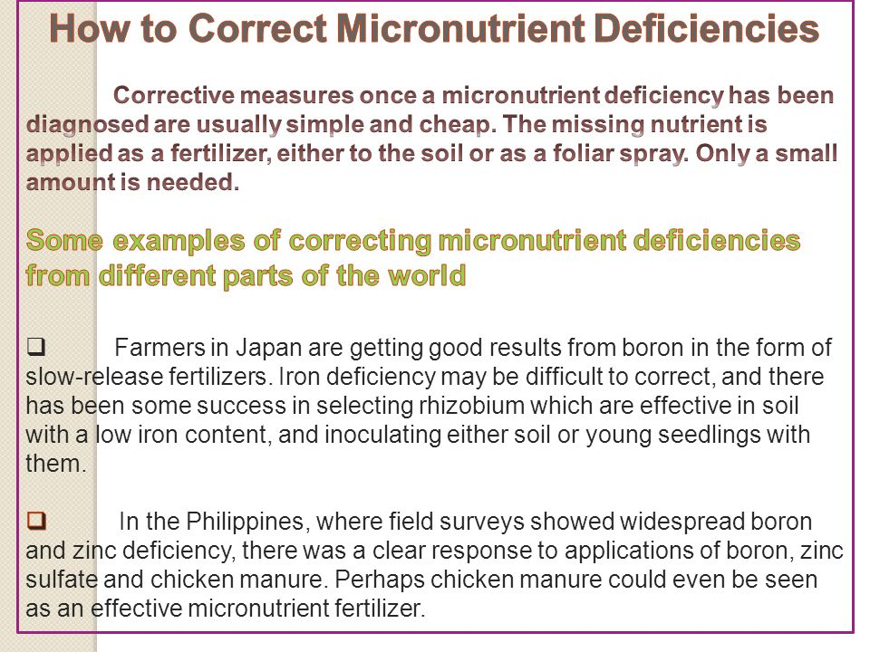 Presentation On Role Of Micronutrients In Fruit Production Ppt