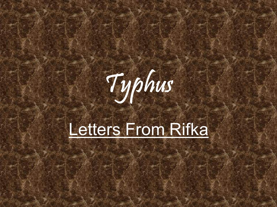 Typhus Letters From Rifka ppt video online