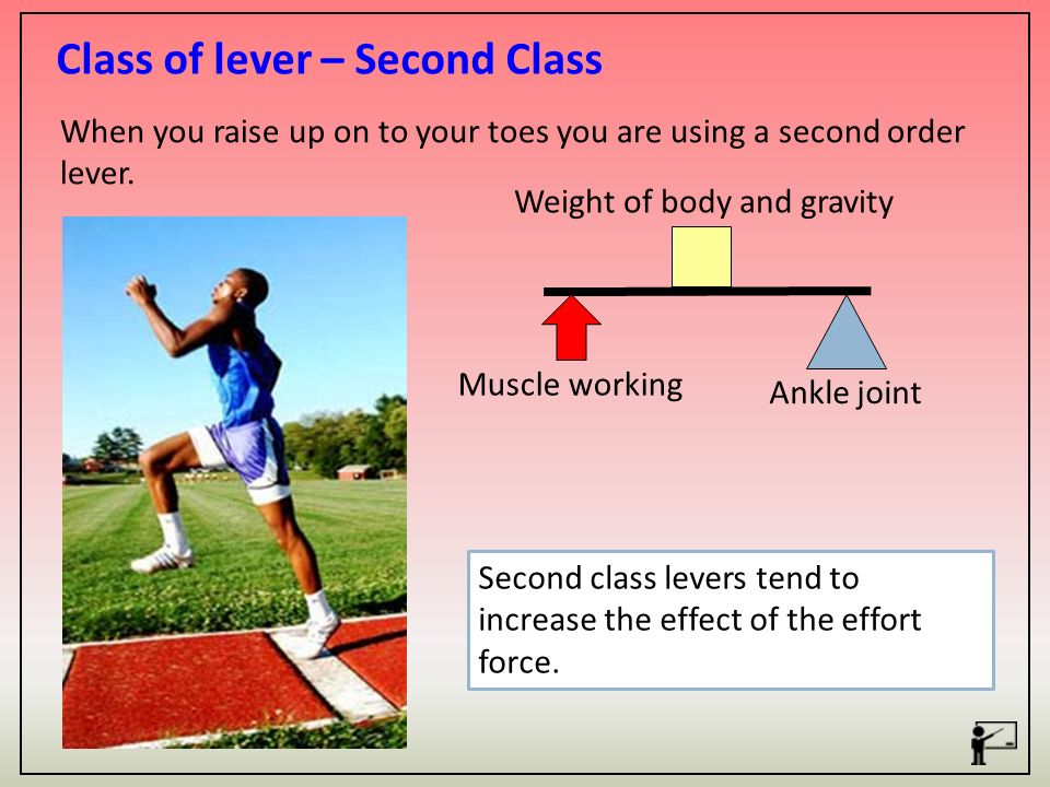 11c Movement Analysis Learning Objectives Ppt Video Online