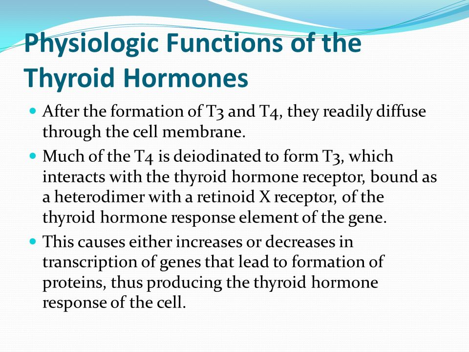 Thyroid Metabolic Hormones Ppt Video Online Download