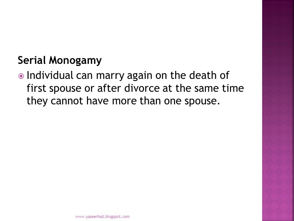 Definition of serial monogamy