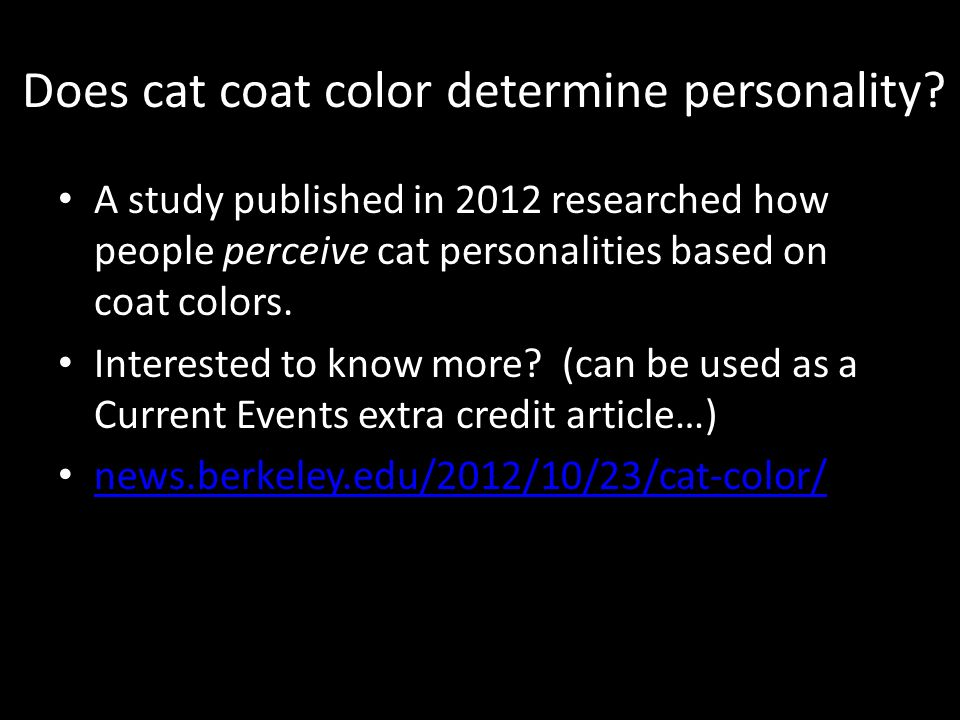 Genetics of Calico cats - ppt download