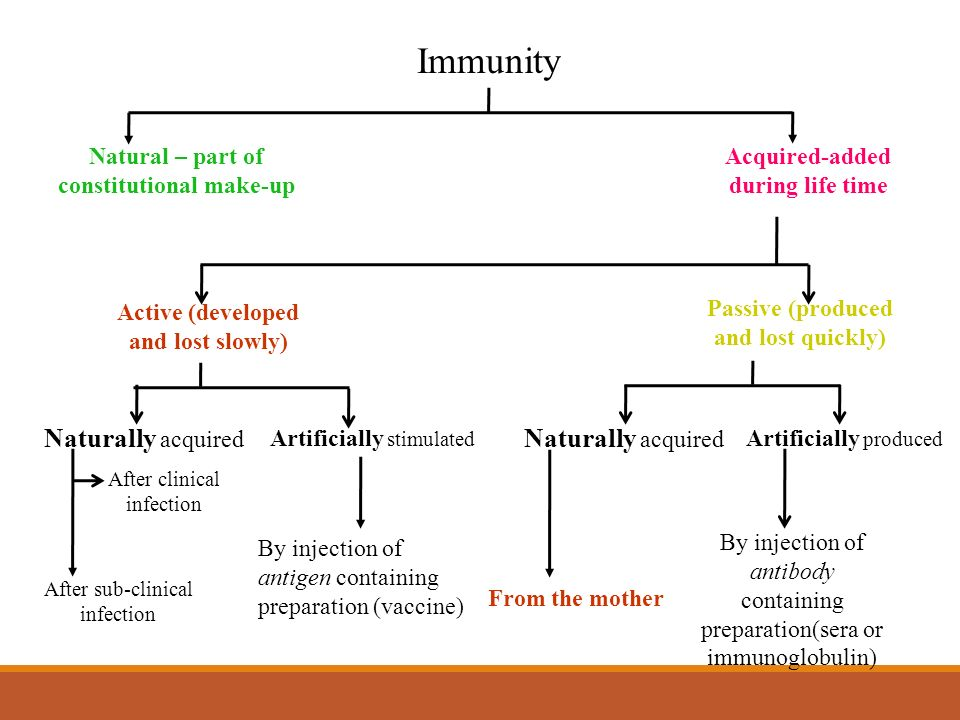 Immunological products ppt video online download.
