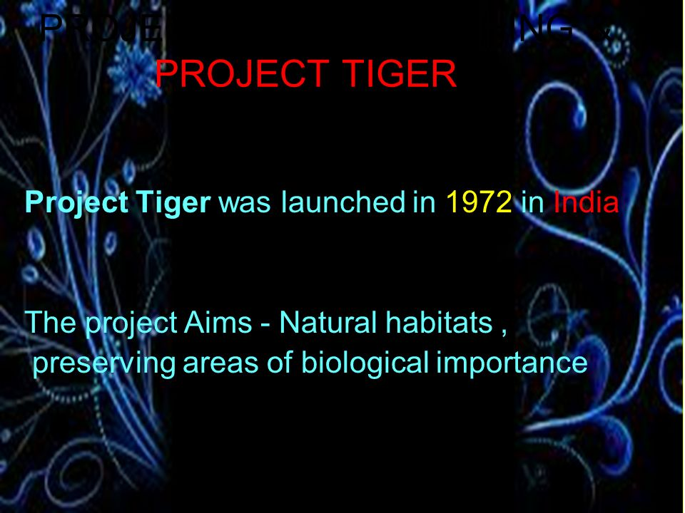 PROJECT TIGER LAUNCHING & PROJECT TIGER