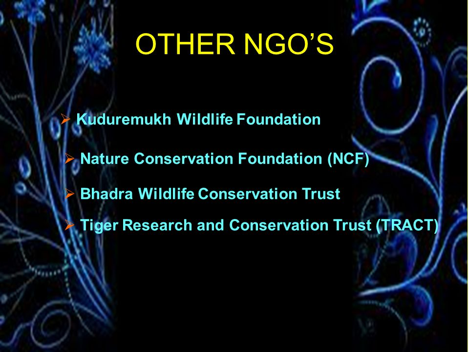 OTHER NGO'S Kuduremukh Wildlife Foundation
