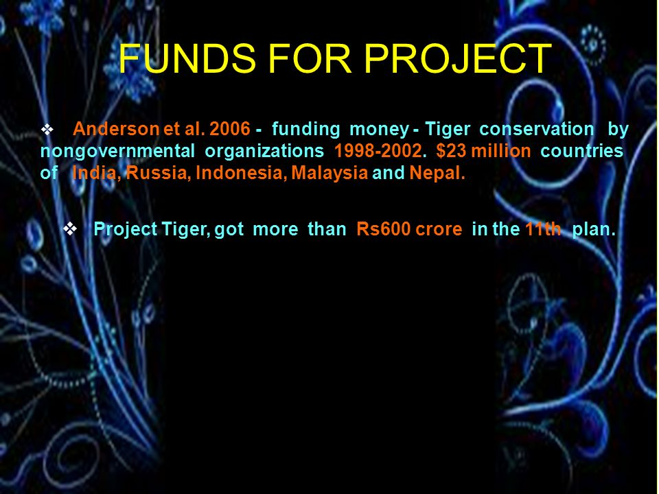 FUNDS FOR PROJECT