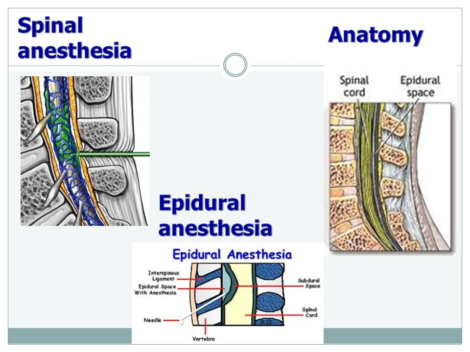 Local anesthetics Dr. Cermanova ppt video online download