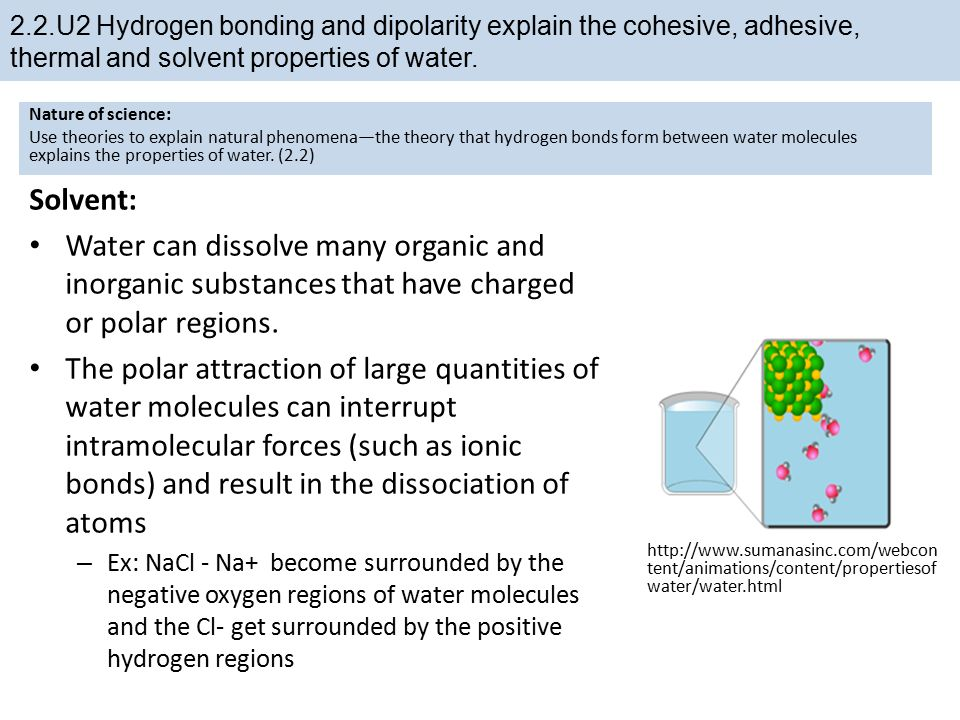 topic 2: molecular biology - ppt download