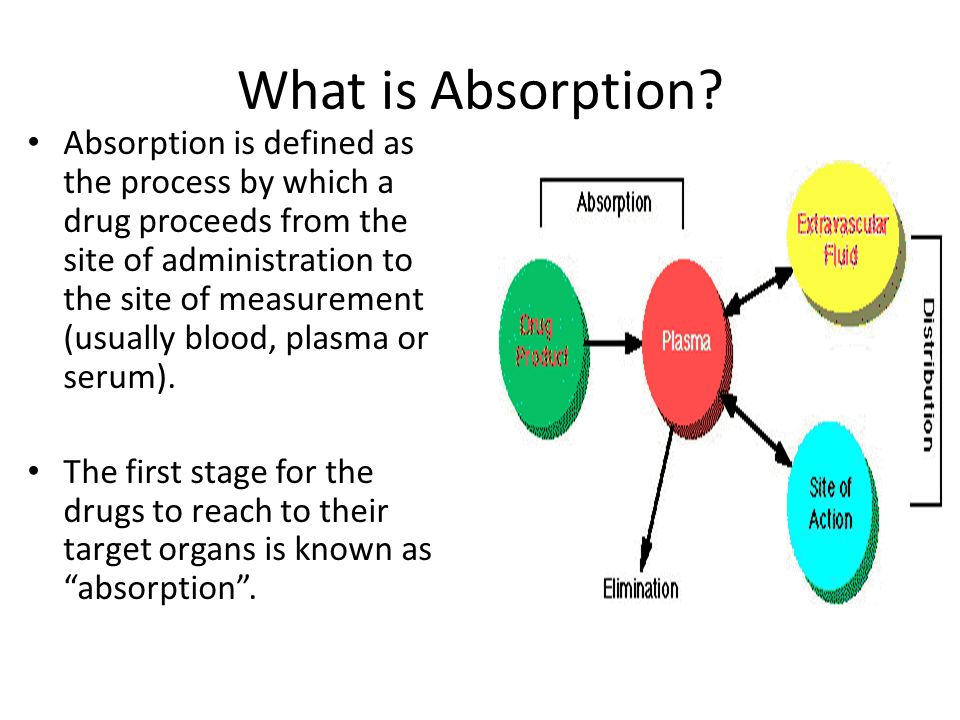 Gastrointestinal Absorption of Drugs - Biologic considerations - ppt ...