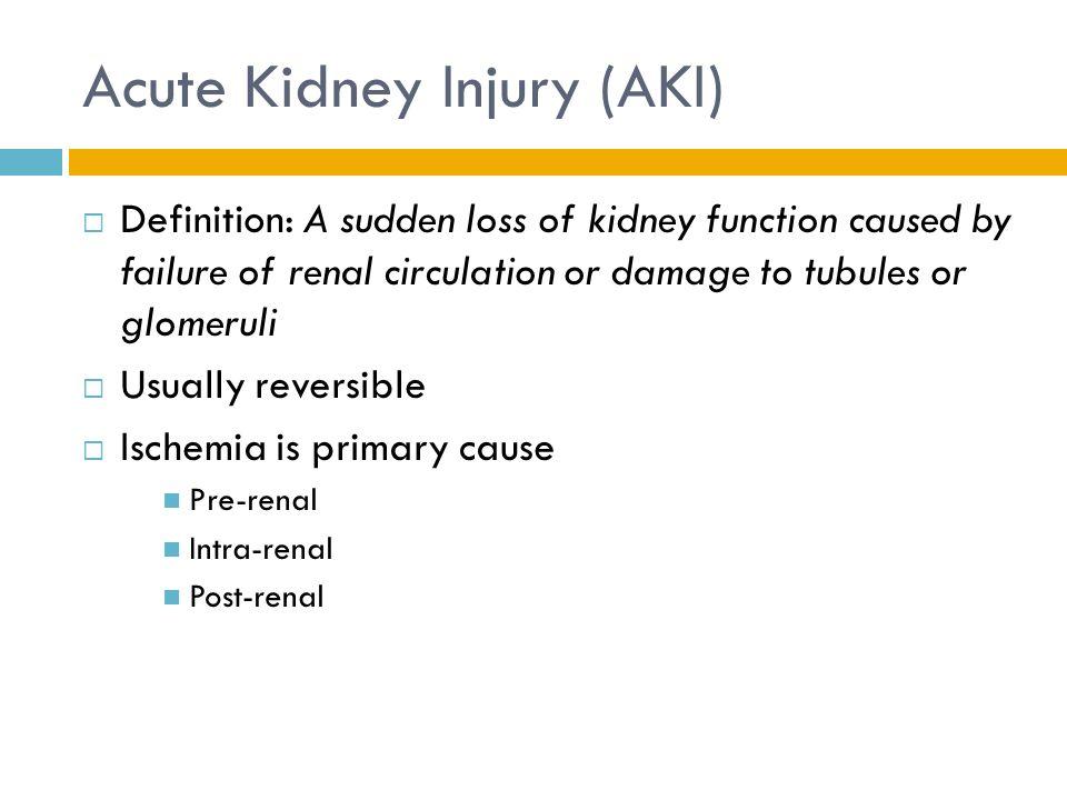 Acute Kidney Injury 29 Categories Renal Failure Function