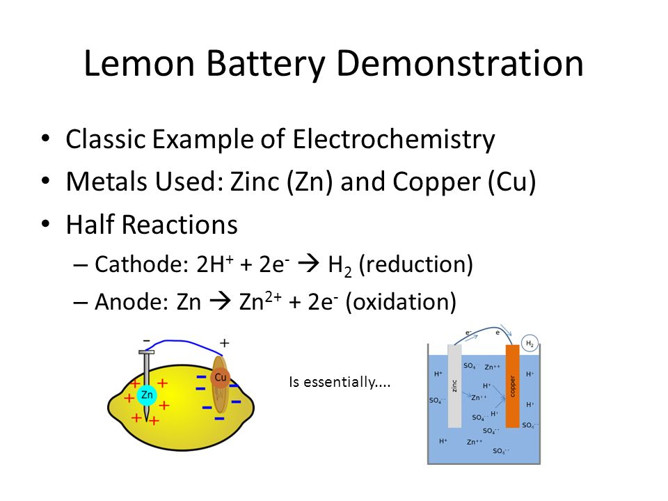lemon battery hypothesis Citrus battery science fair project 1 by: seth kessel 2 my hypothesis is that the electrodes in a single citrus fruit will be an alternative way to power something like a light bulb i base my hypothesis on that.