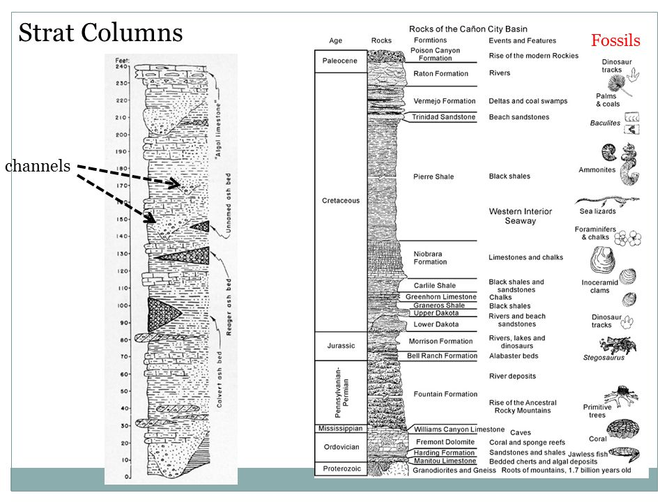 Cliff Stratigraphy This Slide Is For The Instructor Ppt Download
