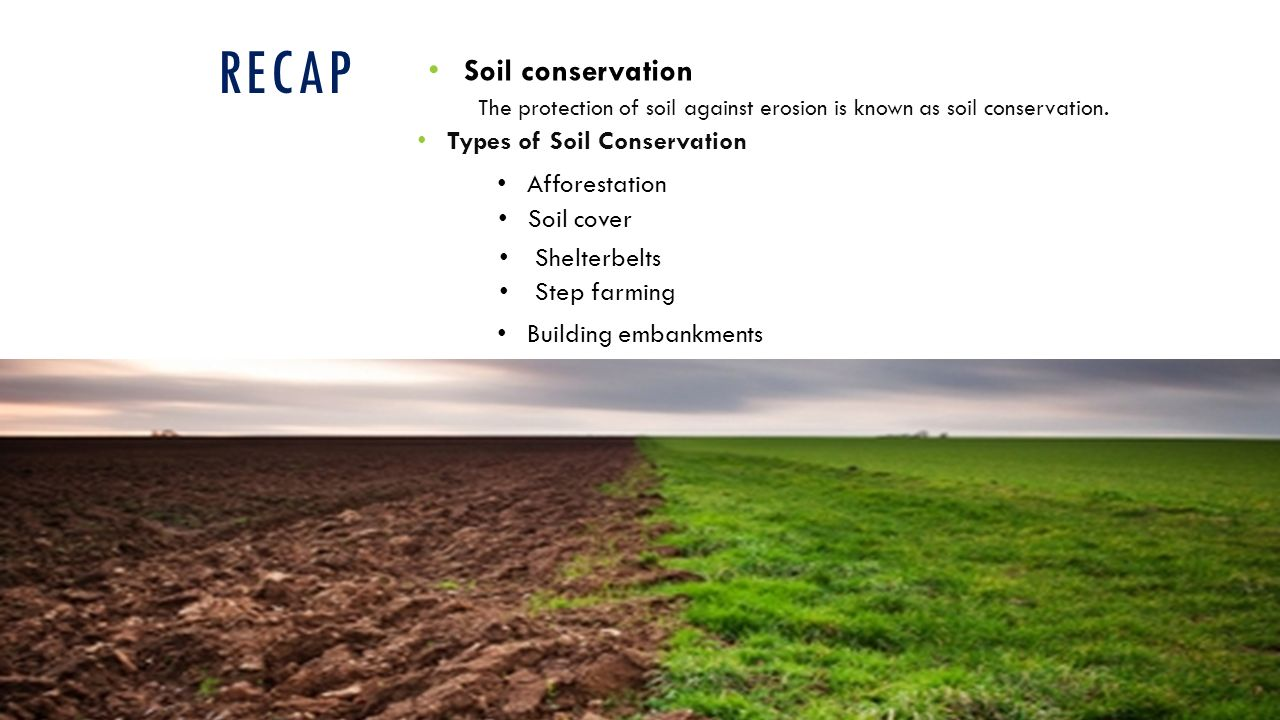 Recap Soil Conservation Types Of Afforestation
