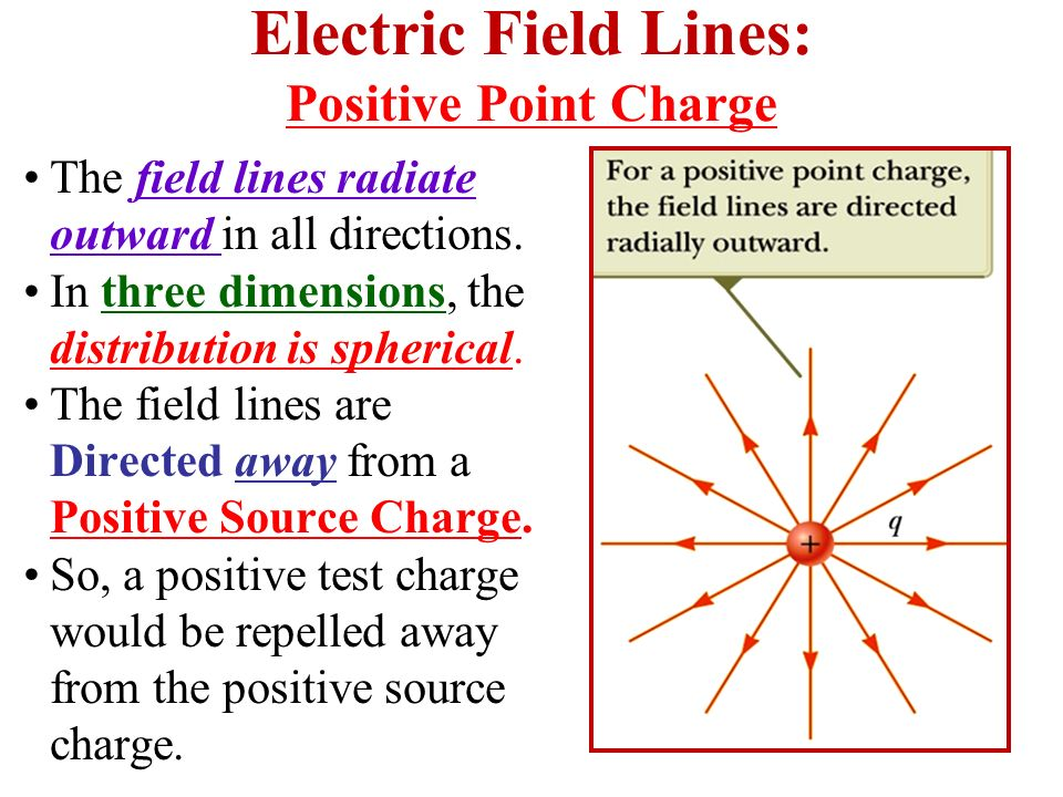 Electric Field Lines: Positive Point Charge The field lines radiate