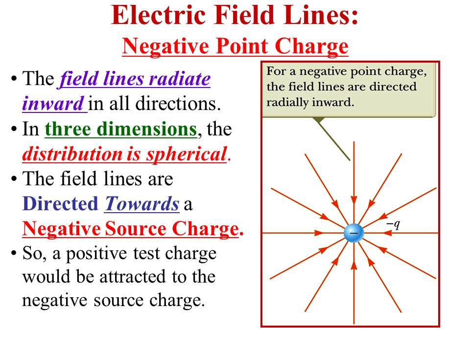 Electric Field Lines: Negative Point Charge The field lines radiate