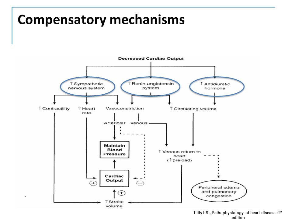 Pharmacology Of Heart Failure Treatments Part 1 Ppt Download