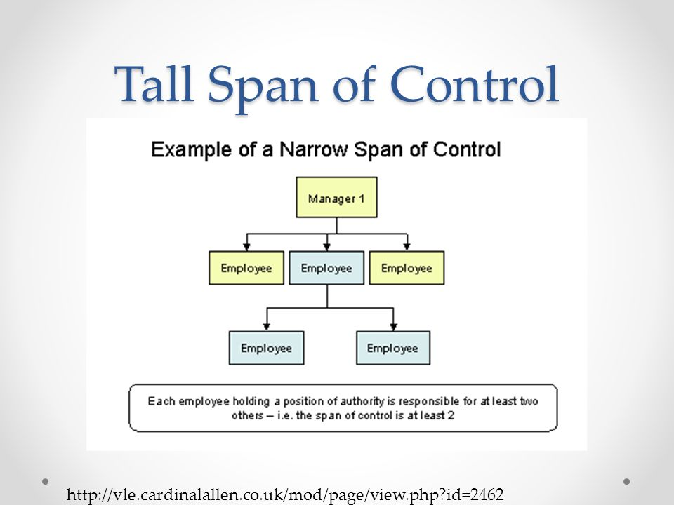 Organizational structure ppt video online download 5 tall span of control publicscrutiny Image collections