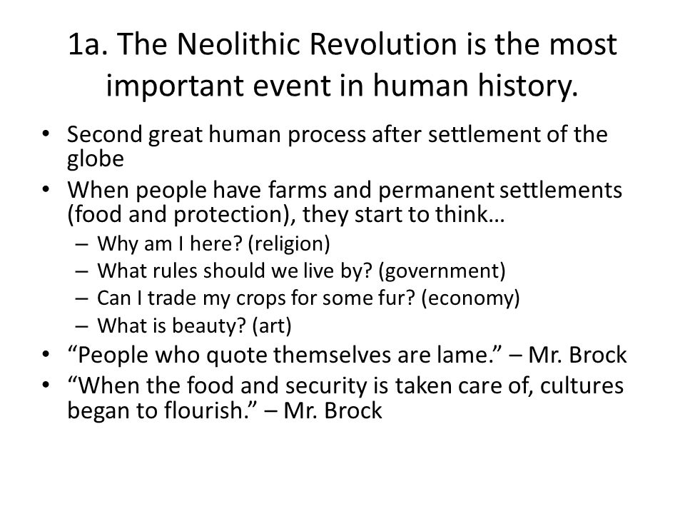 why was the neolithic revolution important