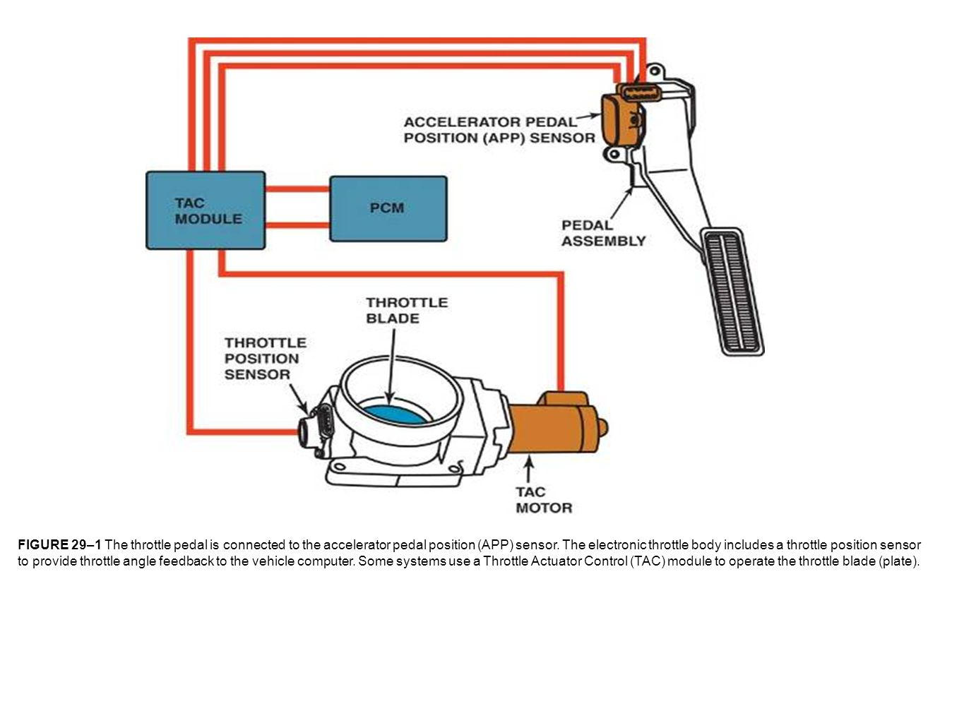 Ford Crown Tps Wiring Wire Diagram App Sensor Free Download Light Ballast Electronic Pedal