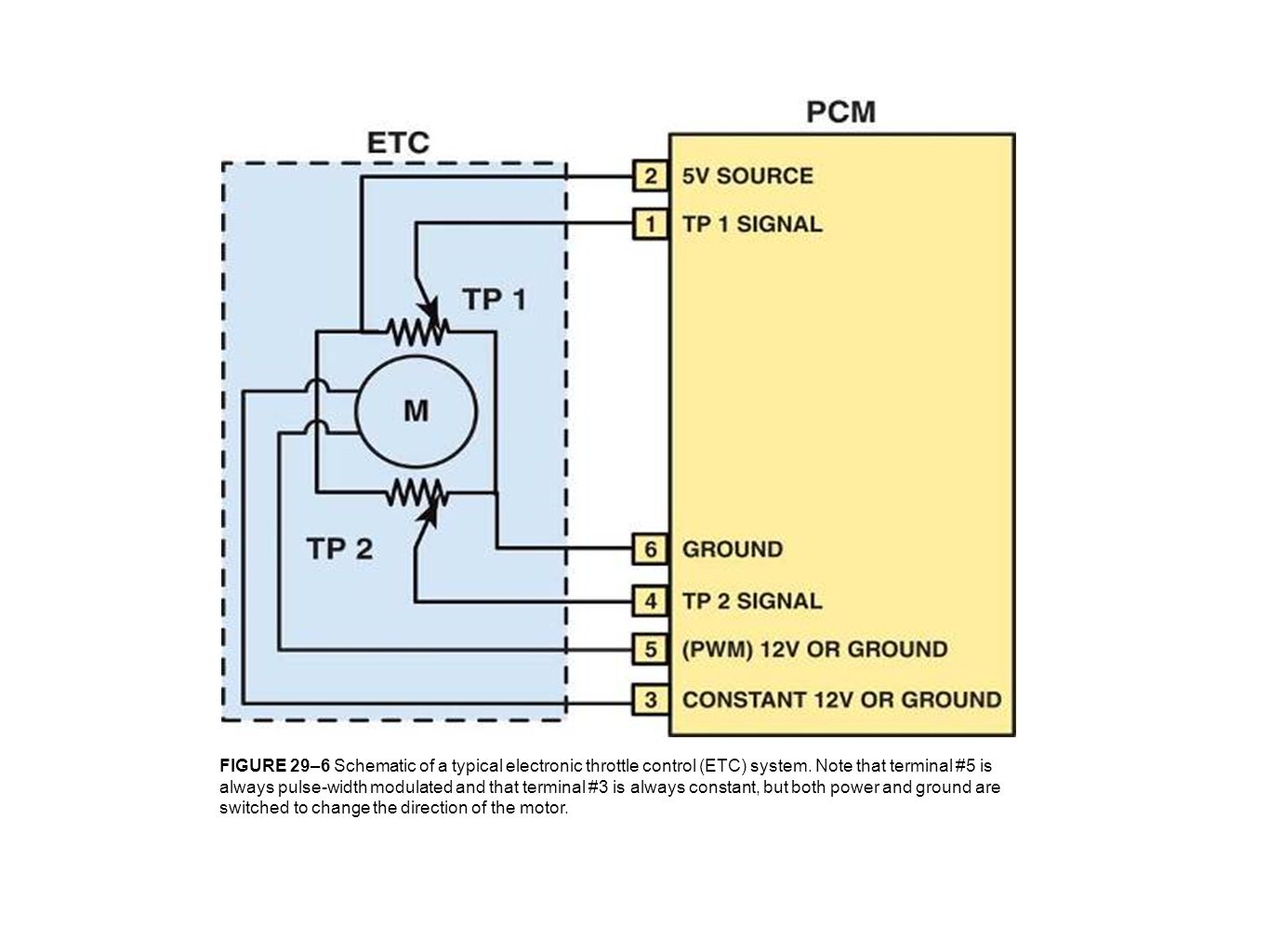 FIGURE 29–6 Schematic of a typical electronic throttle control (ETC) system.