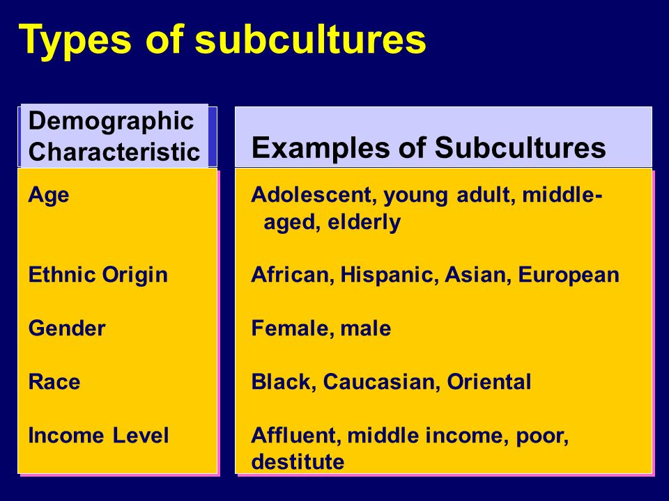subculture examples