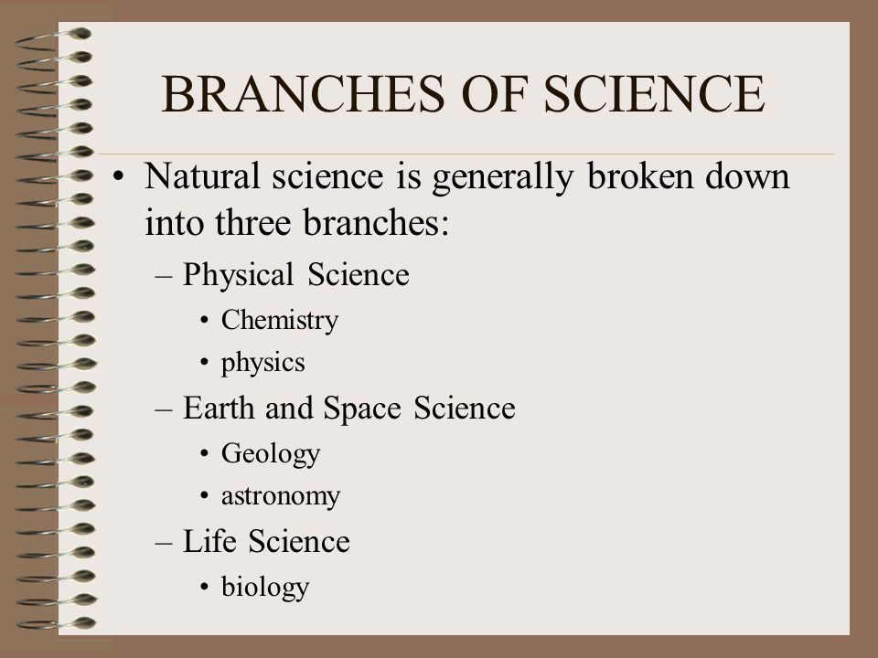 the three branches of science
