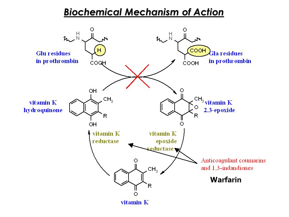 benzocaine synthesis mechanism The reaction mechanism for the synthesis of benzocaine is divided into six key steps: (1) the protonation of the carbonyl by sulfuric acid to give a resonance stabilised intermediate nh2 is also.