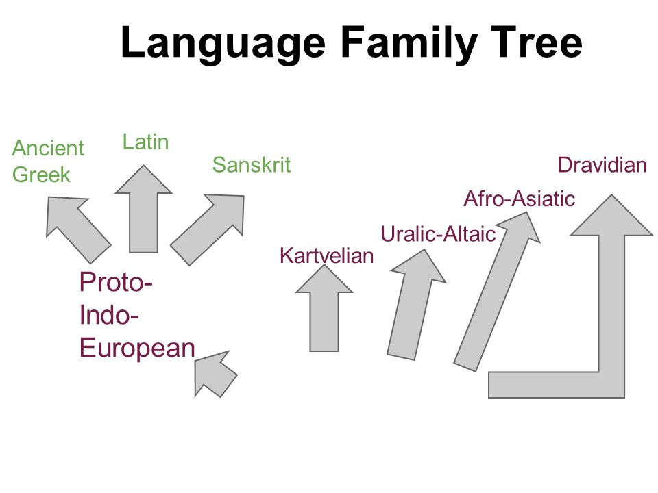 Language family tree ppt video online download 5 language ccuart Choice Image