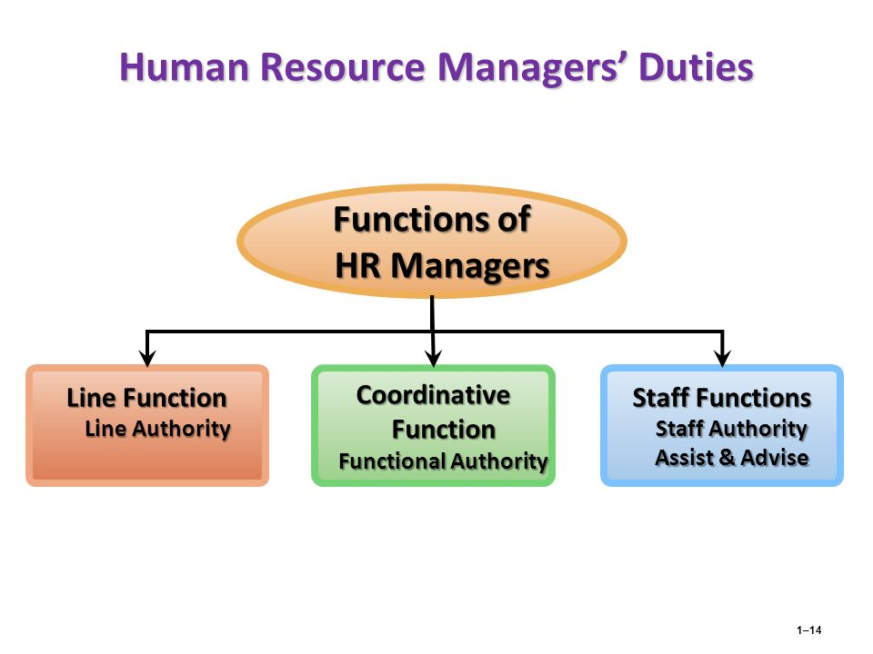 responsibilities of line managers in human resources practice Recent graduates are likely to begin their career in human resources by working in a general hr role many enjoy the breadth of this work and choose to remain in this environment or move into a more senior position with responsibility for a number of hr officers.