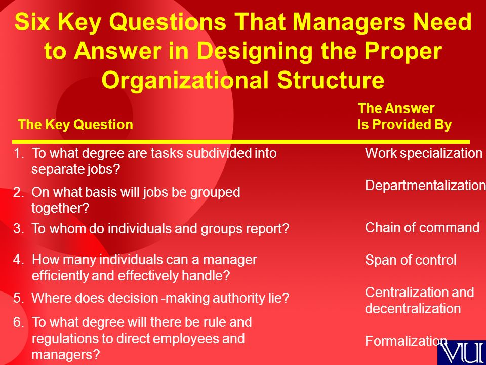 organizational structure questions