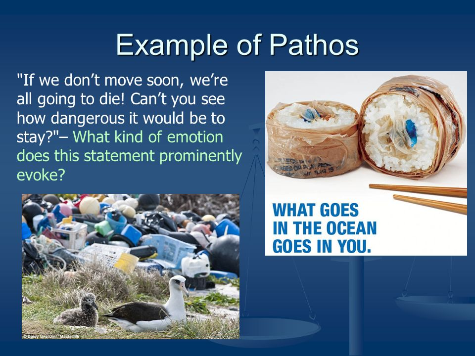 Day 1 Learn Ethos Pathos And Logos Complete Sentence Examples