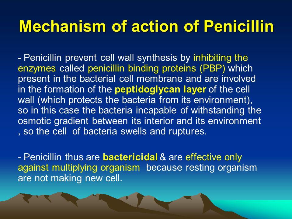 Antibiotics (Pencillin) 2 - ppt video online download