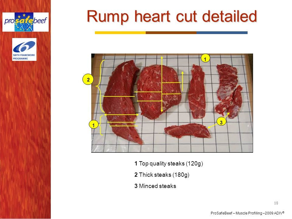 Rump heart cut detailed